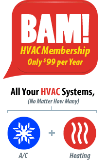 BAM - All Your Systems for only $99 per Year